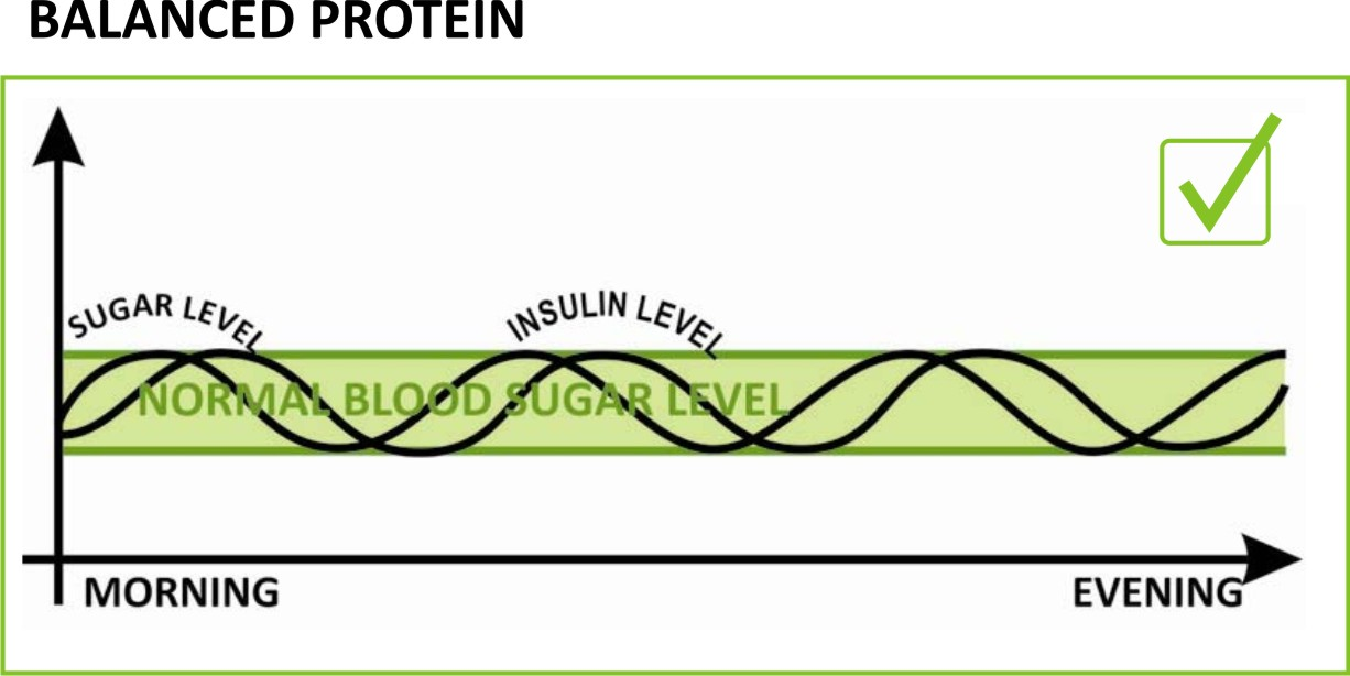 Balanced Protein
